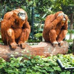 Отель Crowne Plaza Changi Airport с домашними животными