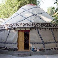 Отель Friends guest house & hostel Кыргызстан, Бишкек - отзывы, цены и фото номеров - забронировать отель Friends guest house & hostel онлайн развлечения
