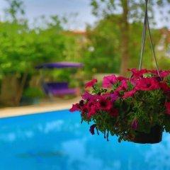 Anfora Hotel Турция, Белек - отзывы, цены и фото номеров - забронировать отель Anfora Hotel онлайн бассейн фото 3