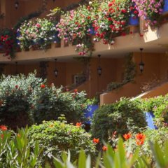 Отель Club Drago Park Коста Кальма фото 2