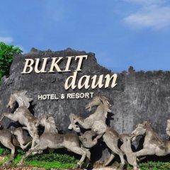 Bukit Daun Hotel and Resort фото 2