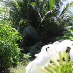 Отель Taharuu Surf Lodge Французская Полинезия, Папеэте - отзывы, цены и фото номеров - забронировать отель Taharuu Surf Lodge онлайн с домашними животными