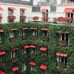 Hotel Plaza Athenee Париж фото 7