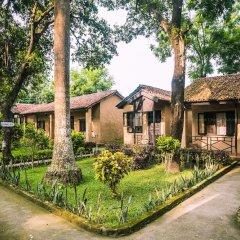 Отель Chitwan Adventure Resort Непал, Саураха - отзывы, цены и фото номеров - забронировать отель Chitwan Adventure Resort онлайн фото 13