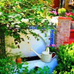 Отель Istanbul Garden Suite фото 2
