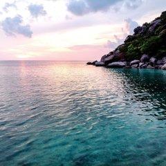 Отель Nangyuan Island Dive Resort Таиланд, о. Нангьян - отзывы, цены и фото номеров - забронировать отель Nangyuan Island Dive Resort онлайн бассейн фото 2