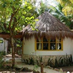 Hotel Dos Ceibas Eco Retreat фото 2
