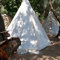 Отель Shiva Camp Патара фото 7