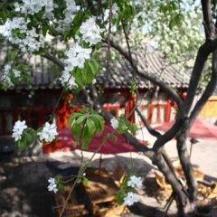Flowering House Courtyard Hotel фото 4
