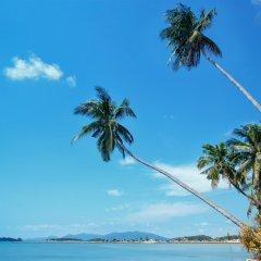 Отель M Place House Таиланд, Самуи - отзывы, цены и фото номеров - забронировать отель M Place House онлайн пляж