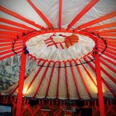 Гостиница Viking в Тихвине отзывы, цены и фото номеров - забронировать гостиницу Viking онлайн Тихвин развлечения