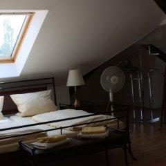 Отель Villa De Baron Германия, Дрезден - отзывы, цены и фото номеров - забронировать отель Villa De Baron онлайн комната для гостей фото 5