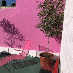 Отель Olga Querida B&B Hostal Мексика, Гвадалахара - отзывы, цены и фото номеров - забронировать отель Olga Querida B&B Hostal онлайн фото 8