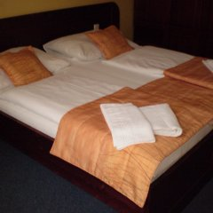 U Stare Pani - At the Old Lady Hotel Прага комната для гостей