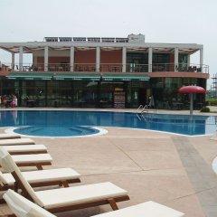 Отель Pollo Resort Солнечный берег с домашними животными