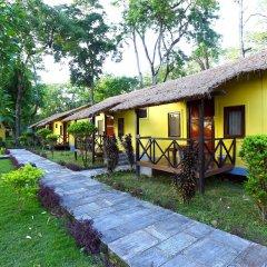 Отель Safari Adventure Lodge Непал, Саураха - отзывы, цены и фото номеров - забронировать отель Safari Adventure Lodge онлайн фото 16