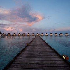 Отель Fuana Inn Мальдивы, Северный атолл Мале - отзывы, цены и фото номеров - забронировать отель Fuana Inn онлайн приотельная территория фото 2
