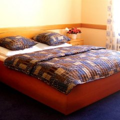 Hotel Hejtman комната для гостей фото 5