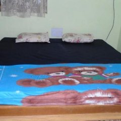 Oyo 18374 Paulinas Guest House in Margao, India from 41$, photos, reviews - zenhotels.com photo 8