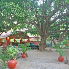 Отель WelcomHeritage Maharani Bagh Orchard Retreat фото 9