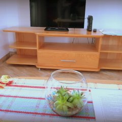 Апартаменты Apartments Lazarevic удобства в номере