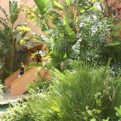 Отель Aparthotel Cabau Aquasol Испания, Пальманова - 1 отзыв об отеле, цены и фото номеров - забронировать отель Aparthotel Cabau Aquasol онлайн фото 8