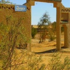 Отель Auberge Africa Марокко, Мерзуга - отзывы, цены и фото номеров - забронировать отель Auberge Africa онлайн фото 10