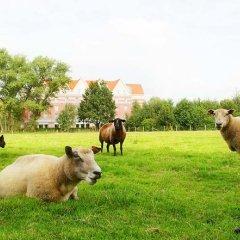 Отель Velotel Brugge Бельгия, Брюгге - отзывы, цены и фото номеров - забронировать отель Velotel Brugge онлайн с домашними животными