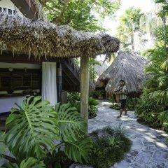 Отель Castaway Island Fiji фото 10