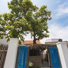 Отель Cashew Tree Bungalow