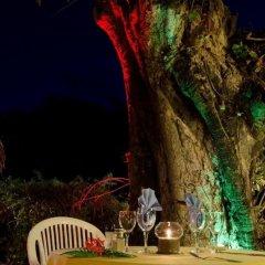 Отель Les Tipaniers Французская Полинезия, Муреа - отзывы, цены и фото номеров - забронировать отель Les Tipaniers онлайн питание фото 2