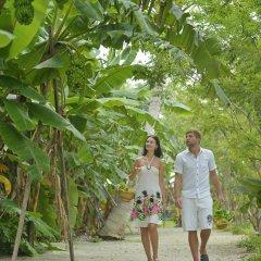Отель Sun Island Resort & Spa Мальдивы, Маччафуши - 6 отзывов об отеле, цены и фото номеров - забронировать отель Sun Island Resort & Spa онлайн помещение для мероприятий