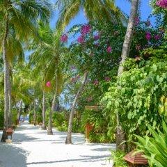 Отель Banyan Tree Vabbinfaru Мальдивы, Остров Гасфинолу - отзывы, цены и фото номеров - забронировать отель Banyan Tree Vabbinfaru онлайн фото 3