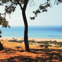 Patara Sun Club Турция, Патара - отзывы, цены и фото номеров - забронировать отель Patara Sun Club онлайн пляж фото 2