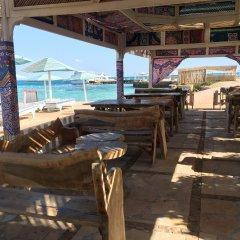 Отель New DaVinci Beach & Diving Resort пляж