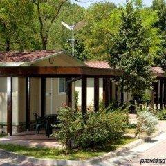 Отель Flaminio Village Bungalow Park Италия, Рим - 3 отзыва об отеле, цены и фото номеров - забронировать отель Flaminio Village Bungalow Park онлайн фото 4