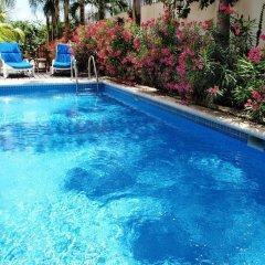 Отель Las Golondrinas Плая-дель-Кармен бассейн фото 3