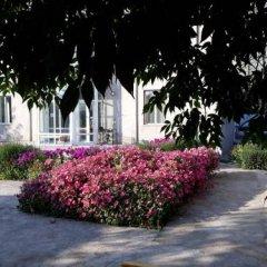 Отель Teskey B&B Кыргызстан, Каракол - отзывы, цены и фото номеров - забронировать отель Teskey B&B онлайн фото 8