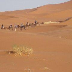 Отель Riad Aicha Марокко, Мерзуга - отзывы, цены и фото номеров - забронировать отель Riad Aicha онлайн приотельная территория