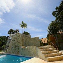 Отель Oasis Resort бассейн