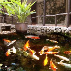 Отель Diamond Bay Resort & Spa фото 9