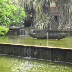 Отель Tangerine Beach Шри-Ланка, Калутара - 2 отзыва об отеле, цены и фото номеров - забронировать отель Tangerine Beach онлайн приотельная территория фото 2