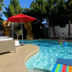 Отель Blue Moon Resort Las Vegas США, Лас-Вегас - отзывы, цены и фото номеров - забронировать отель Blue Moon Resort Las Vegas онлайн бассейн фото 3