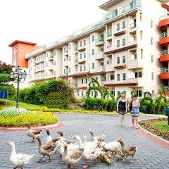Belconti Resort Hotel - All Inclusive с домашними животными
