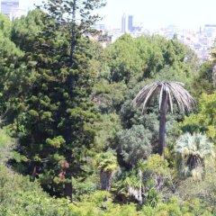 Отель Botanic Views Guest House Лиссабон фото 5