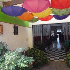 Отель Hostal de Maria Мексика, Гвадалахара - отзывы, цены и фото номеров - забронировать отель Hostal de Maria онлайн фото 2