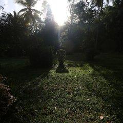 Отель Plantation Villa Ayurveda Yoga Resort