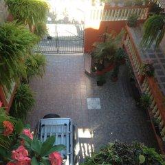 Отель Marjenny Гондурас, Копан-Руинас - отзывы, цены и фото номеров - забронировать отель Marjenny онлайн фото 5