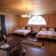 Мини-отель Папайя Парк Стандартный номер с разными типами кроватей фото 8