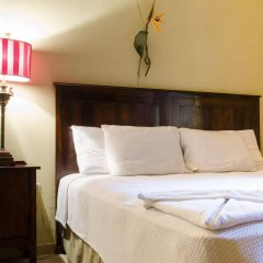 Paraiso Rainforest and Beach Hotel комната для гостей фото 2